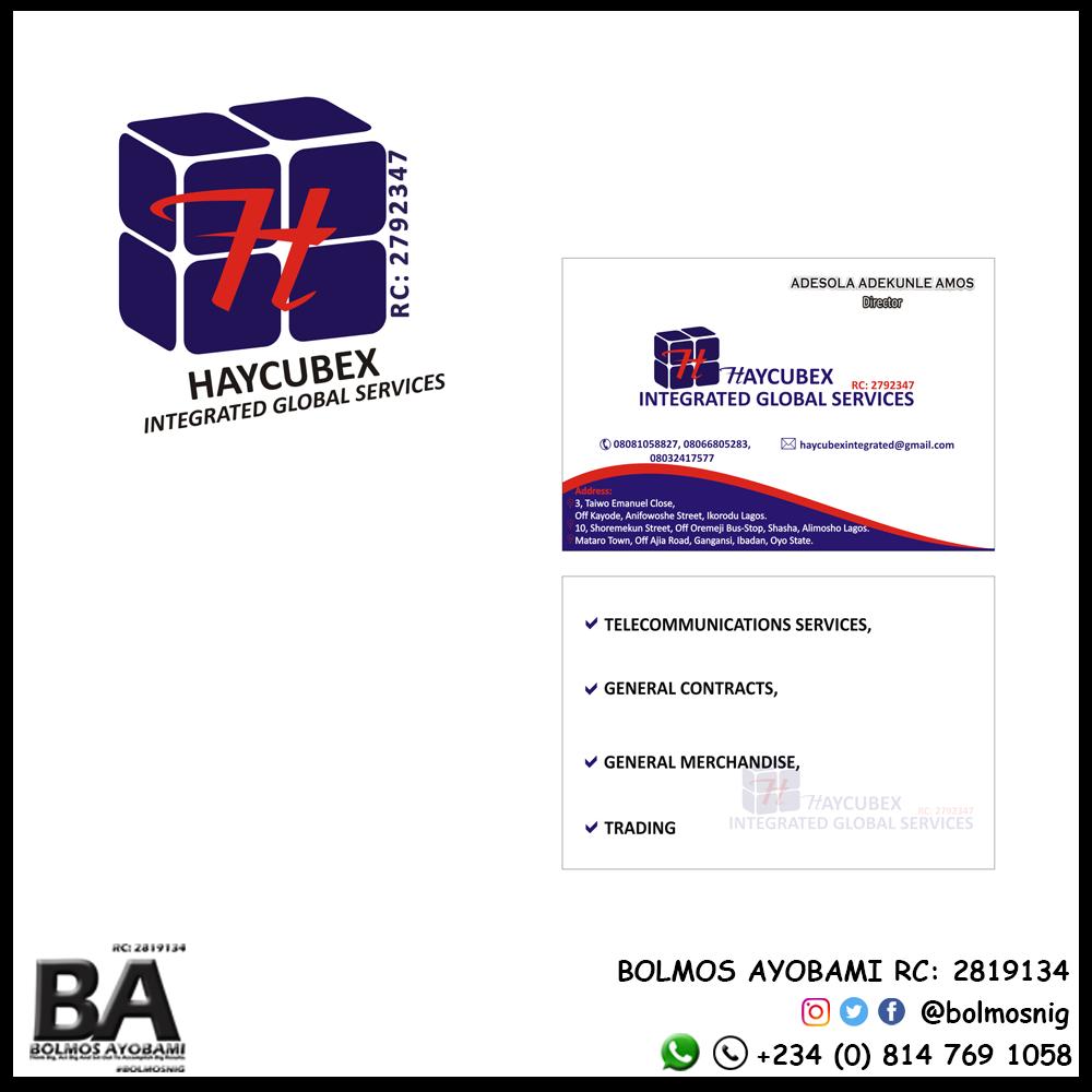 HayCubex Int Glo Ser Logo and Business Card Design