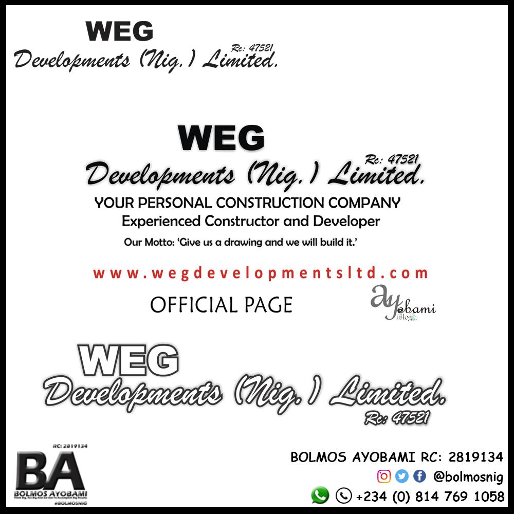 WEG Logo and Ads Design