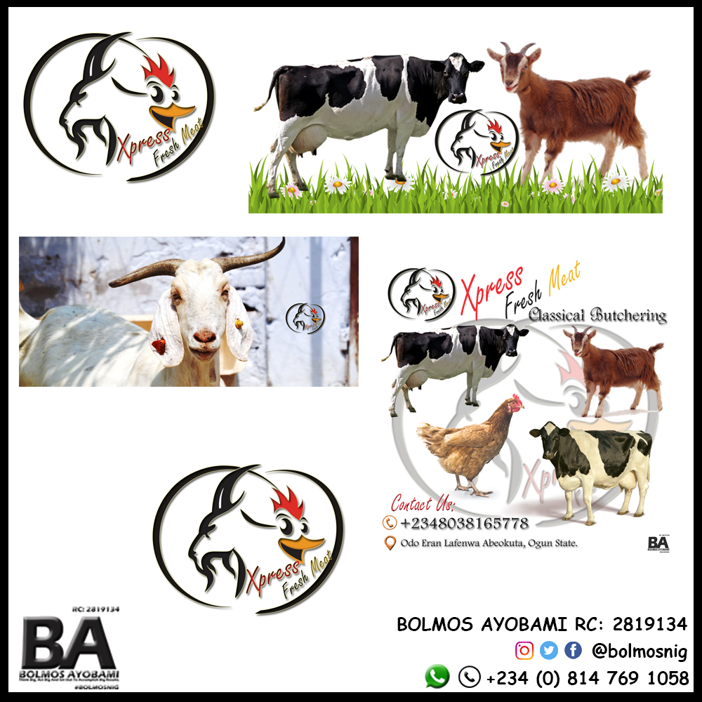 Xpress F meat Logo and Ads Design
